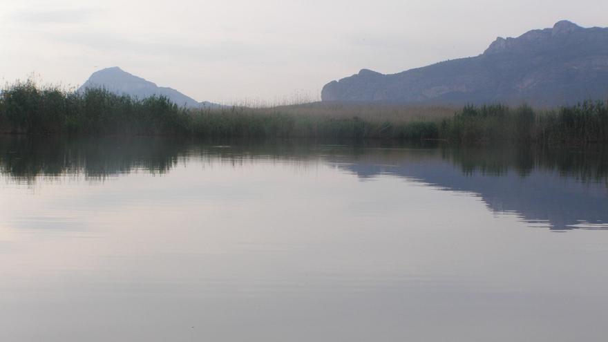 El 90% de las especies pescadas en los pantanos y marjales valencianos son invasoras, según Acció Ecologista-Agró