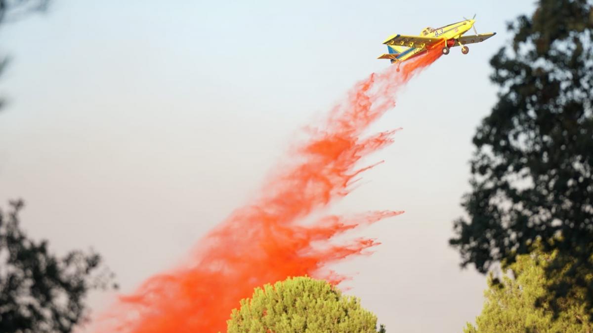 El incendio declarado el sábado en los Arenales ha arrasado unas 9,5 hectáreas