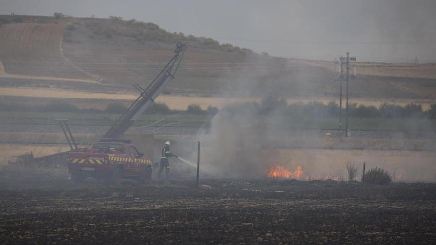 Vidayanes sufre el incendio más grande en lo que va de verano, 50 hectáreas