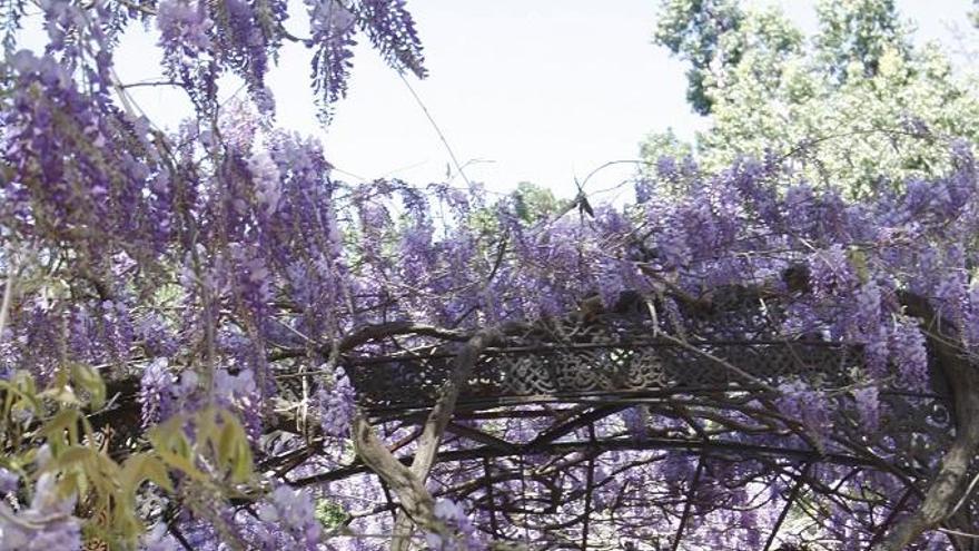 El Jardín Botánico de La Concepción protagoniza La Guía Repsol