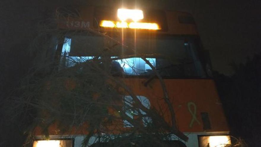 Un tren choca contra un árbol colocado sobre las vías
