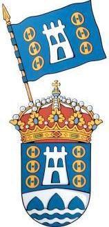 La bandera y el escudo aprobados por el pleno municipal celebrado ayer en Rodeiro.