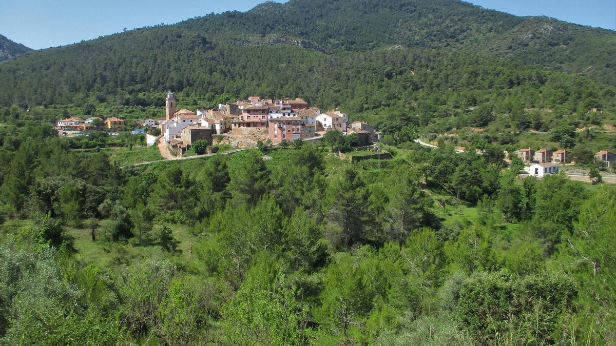 Torralba del Pinar està enclavat en un espai natural protegit (ENP), al parc natural de la Serra d'Espadà.