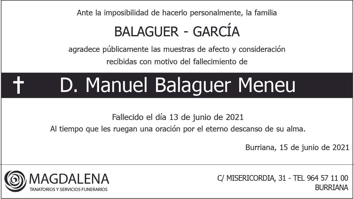 D. Manuel Balaguer Meneu