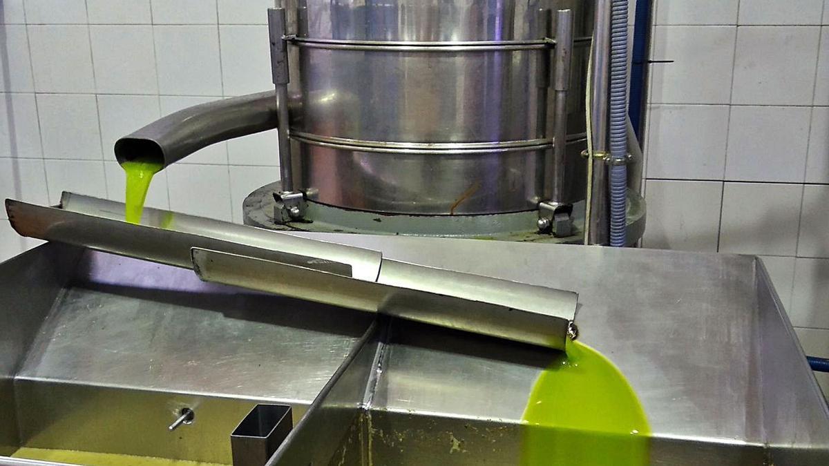 Uno de los retos del sector olivarero español es ampliar el mercado del aceite de oliva virgen.