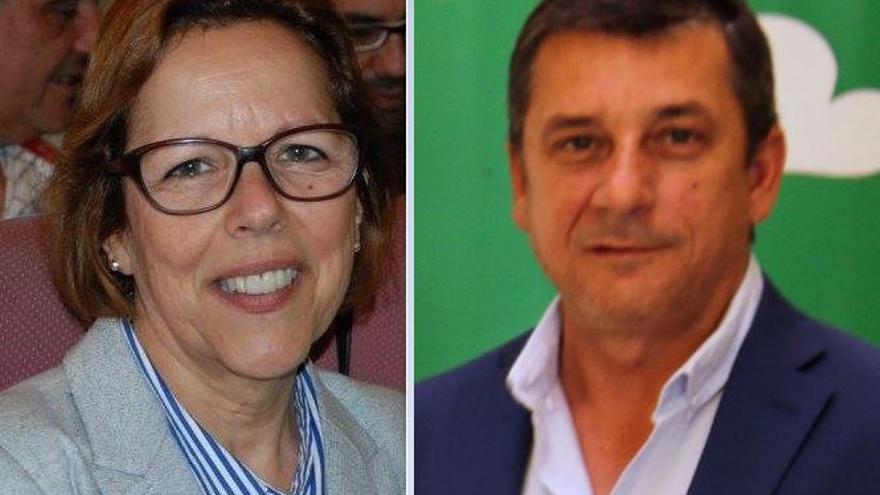 Dimite la portavoz municipal de IU y edil de Cultura en Benalmádena, Elena Galán