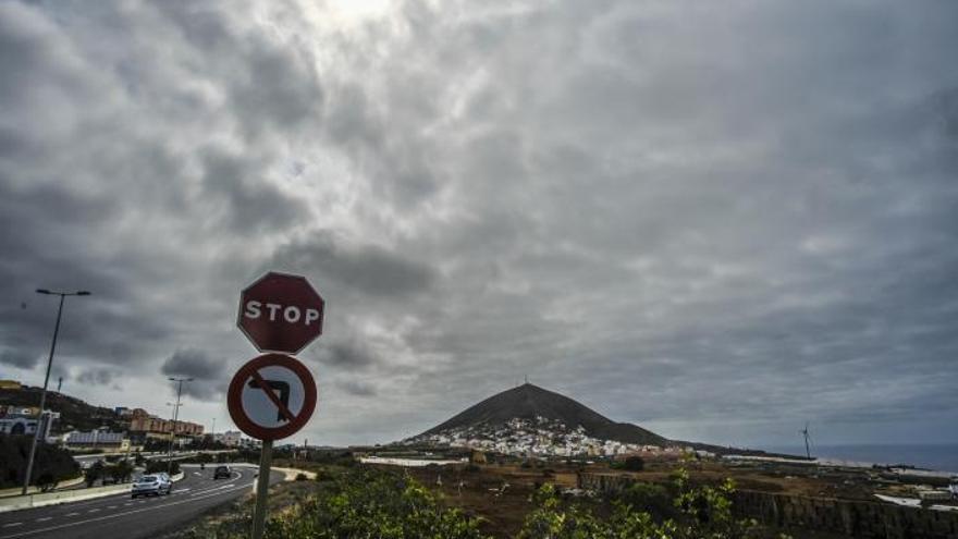 Las medianías del norte de Gran Canaria reciben más de dos litros por metro cuadrado
