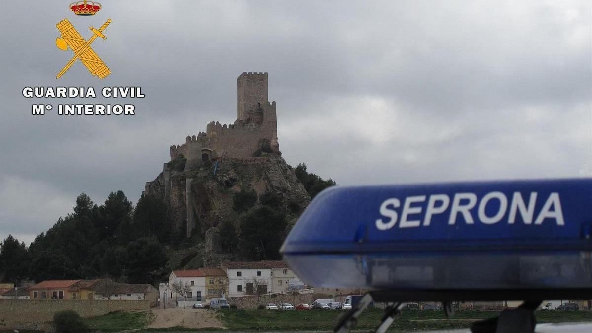 Imagen de archivo del Servicio de Proteción de la Naturaleza SEPRONA.