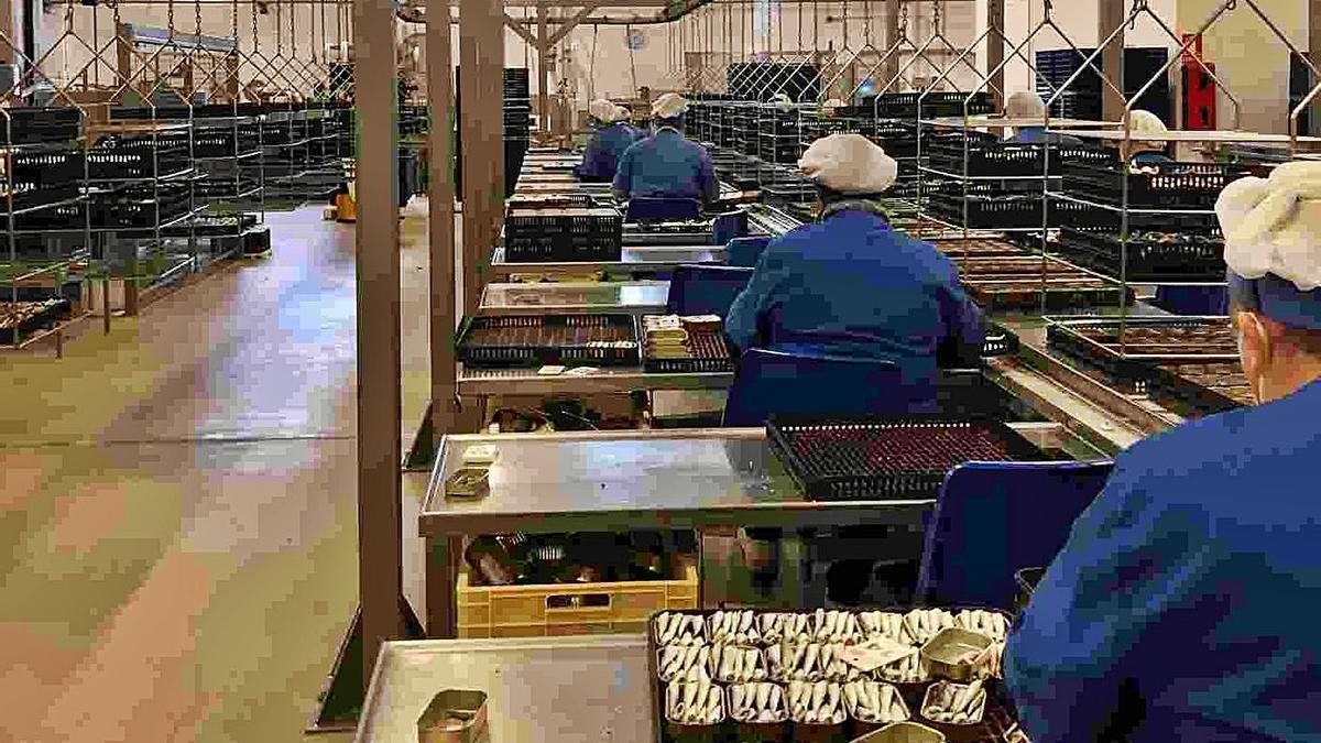 Una imagen del interior de la fábrica, ayer, con trabajadoras en el proceso de enlatado. |   // FDV