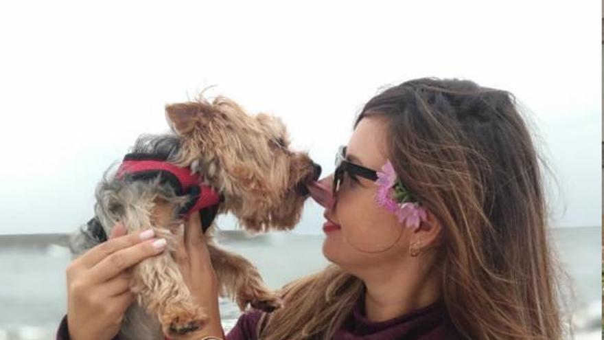 Una guardería canina deberá pagar 2.500 euros por la muerte de un perro