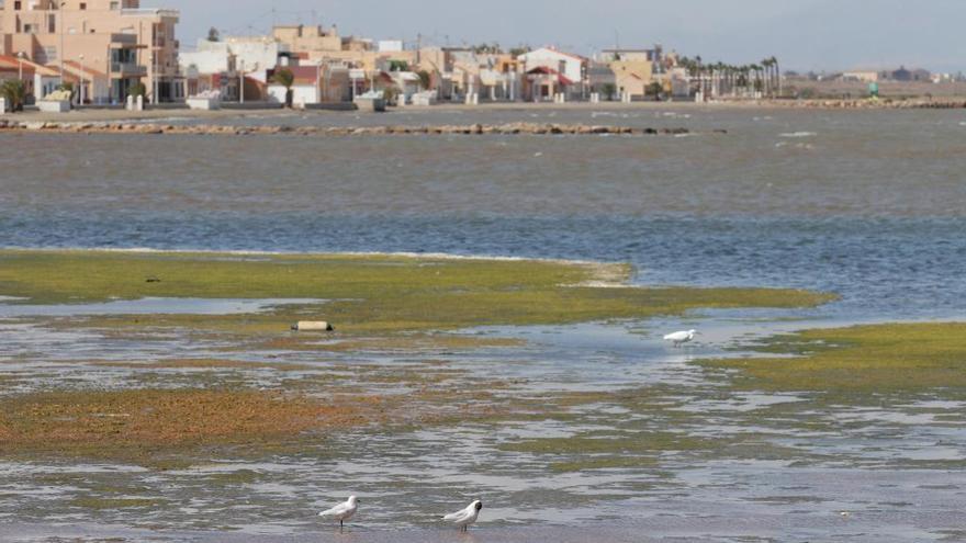 El Congreso aprueba la reconversión a agricultura ecológica y de secano el campo de Cartagena