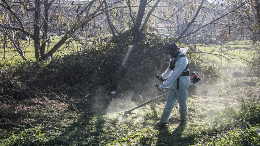 El consistorio pedirá a la CHT permiso para limpiar la Ribera