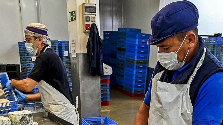 Dos trabajadores tratan los productos en una quesería.