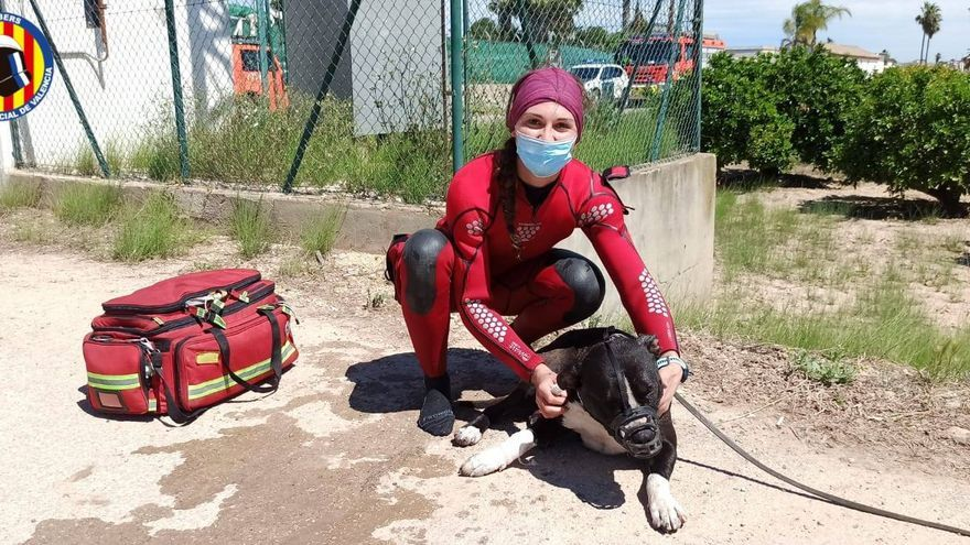 Angustioso rescate de un hombre y su perro en una acequia de Riola