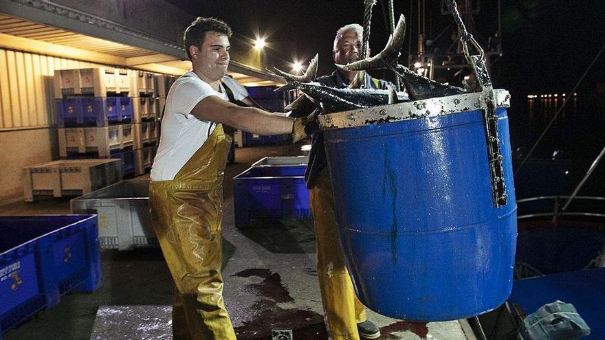 El Ministerio de Agricultura y Pesca da por hecho el aumento del cupo de bonito