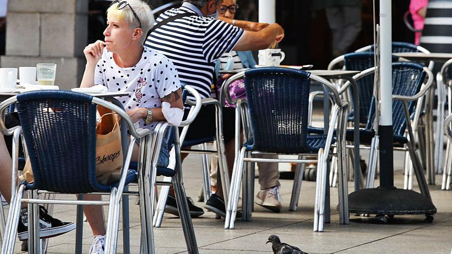 """""""Las palomas causan pérdidas de entre 500 y 1.000 euros al año"""", denuncian los hosteleros"""