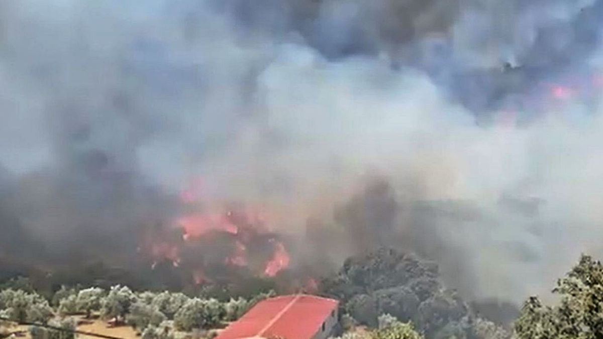Imagen del incendio cerca de una casa de aperos en Yunquera. | EUROPA PRESS