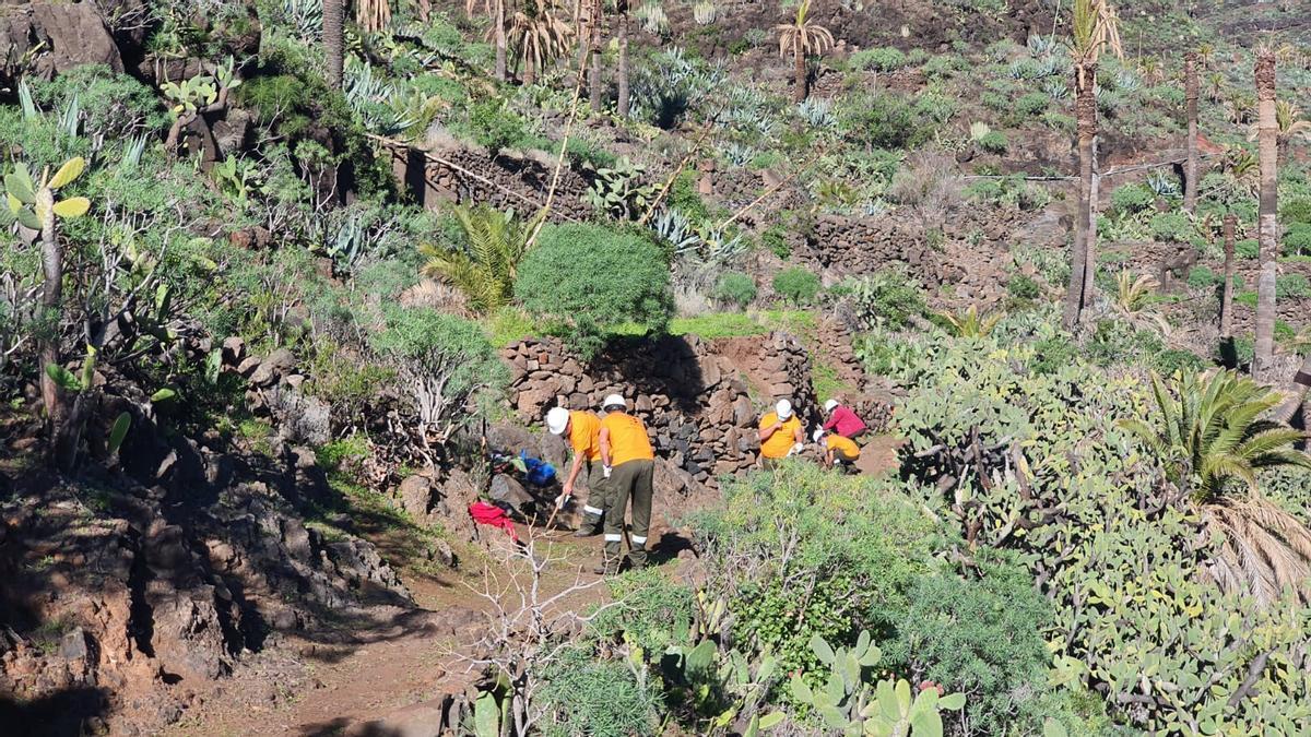 Tareas de limpieza de entornos naturales en La Gomera.