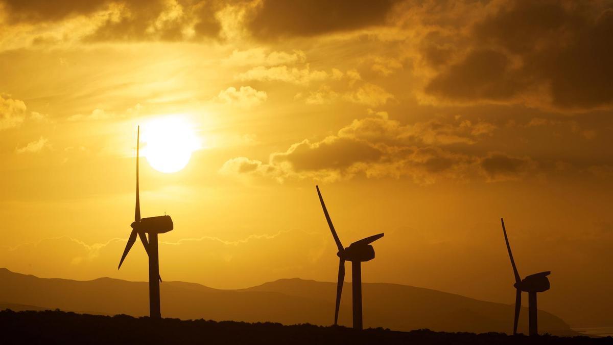 Molinos de viento en un parque eólico.