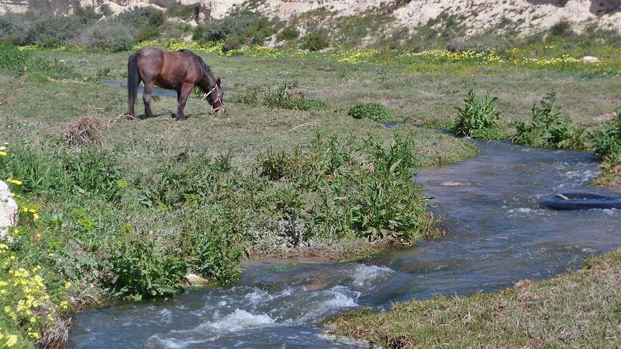 La declaración de humedal del río Seco deja un kilómetro de cauce fuera de la protección