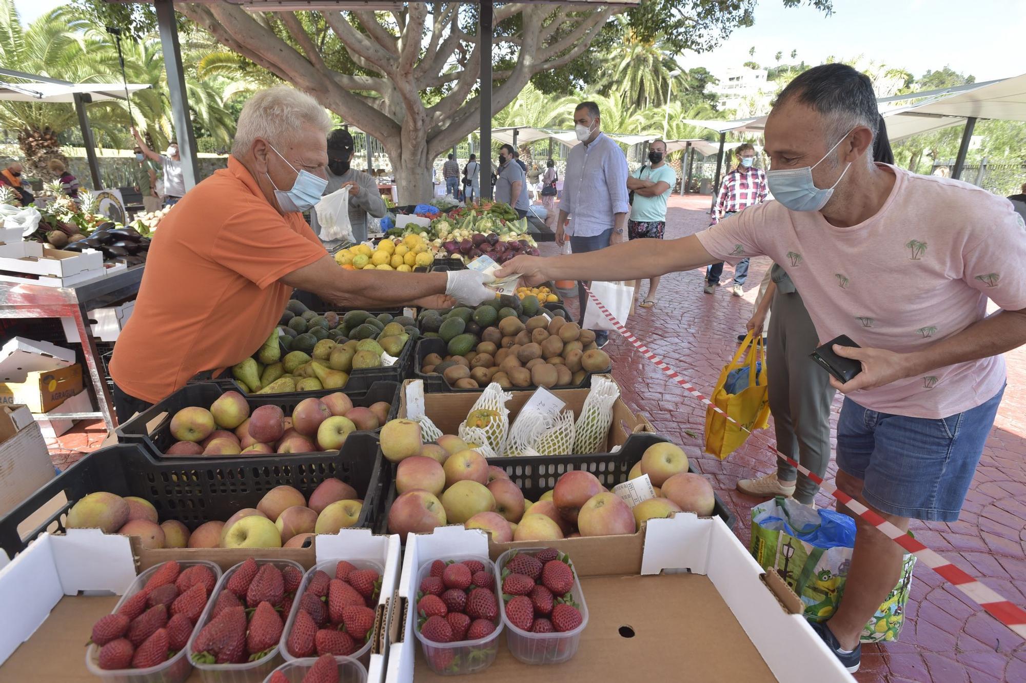 Reapertura del Mercado Agrícola de San Lorenzo (18/04/2021)