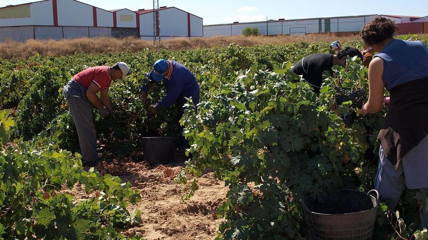 Opas y sindicatos piden un servicio en Empleo que garantice las condiciones laborales y sanitarias de los temporeros