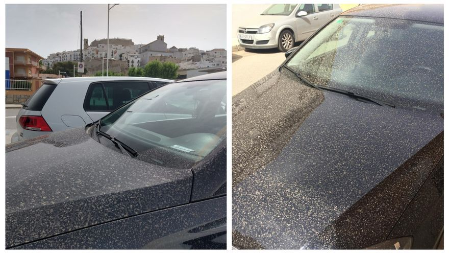 Coches, aceras y terrazas de Castellón se cubren de polvo con una intensa lluvia de barro