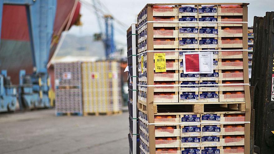 El sector citrícola prevé una cosecha un 9,1 % inferior pero con mejores precios