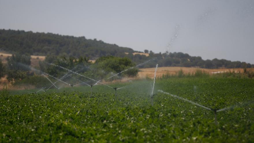 España tendrá una nueva norma sobre contaminación por nitratos