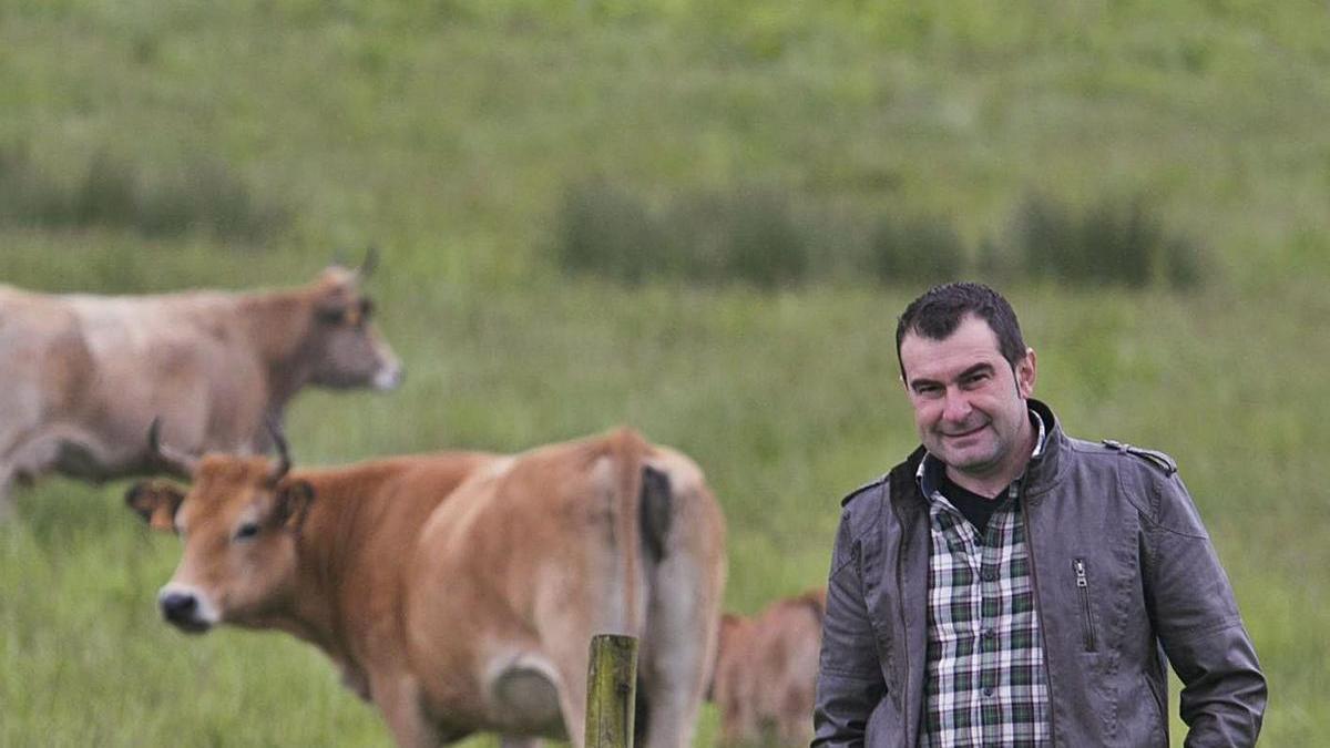 Rubén Fernández, presidente de la IGP Ternera Asturiana. | Miki López