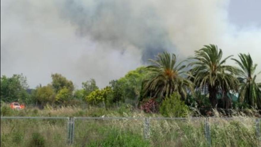 Espectacular humareda desde la CV-35 por un incendio forestal en San Antonio de Benagéber