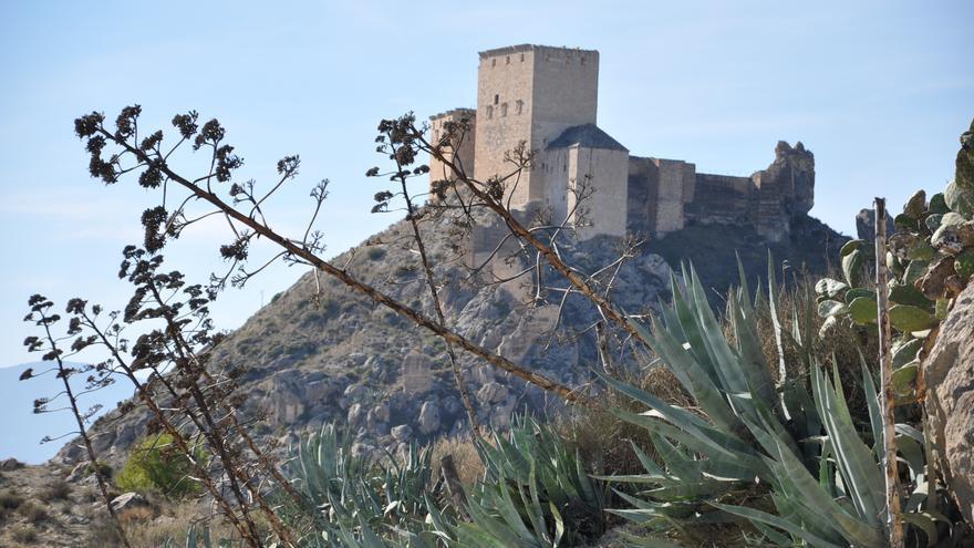 Mula aprueba la expropiación forzosa del 33,33 por ciento del Castillo en manos privadas