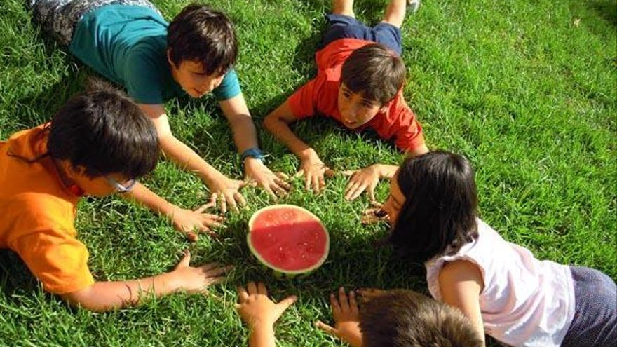 Brotes de integración  de los niños sin familia  en la huerta de Alboraia