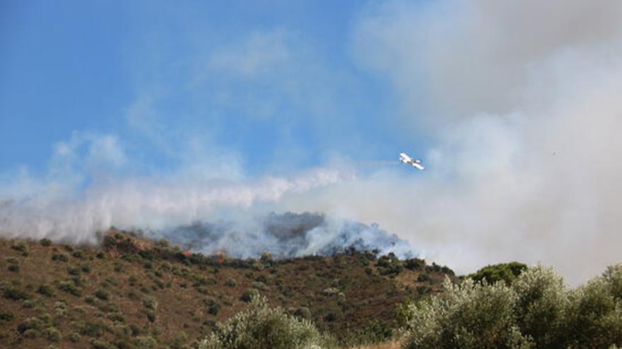Activada l'Alerta del Pla Infocat per l'incendi forestal de Llançà