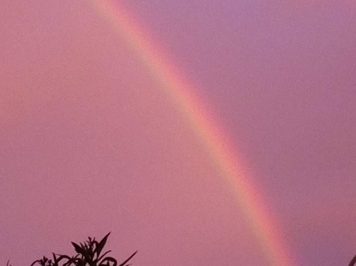 ctv-uke-arcoiris-valencia6