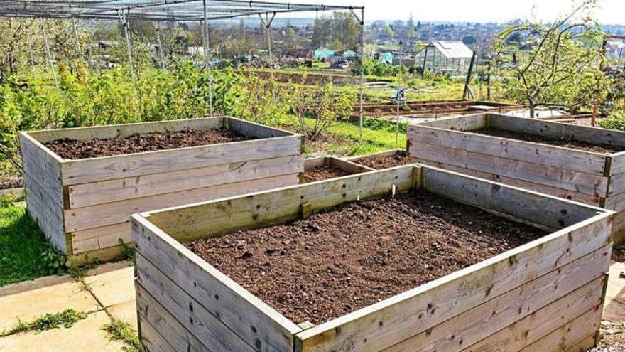 Jardineres per conrear les nostres verdures