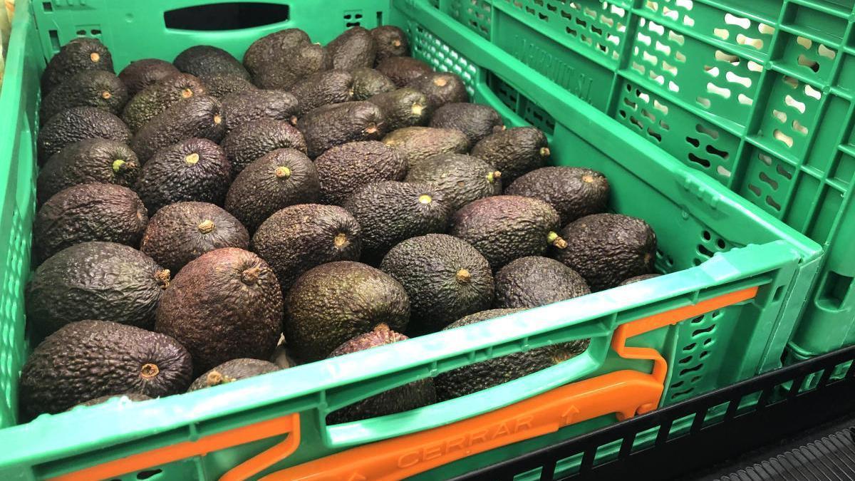 Aguacates en la sección de frutas y verduras de Mercadona.