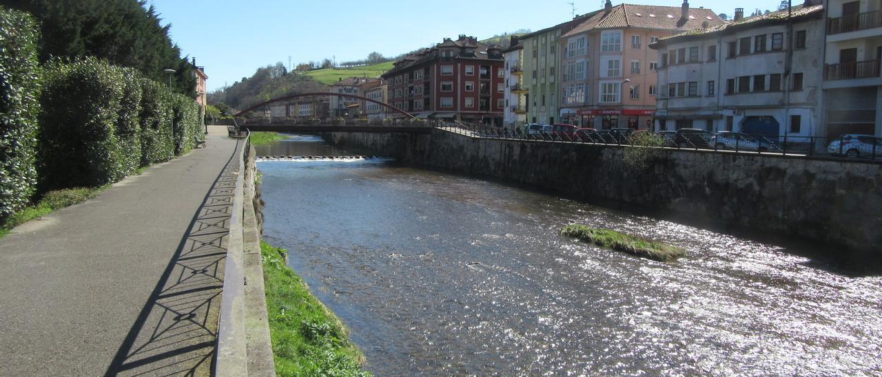 Coto truchero de pesca sin muerte (captura y suelta) en el río Güeña, en Cangas de Onís
