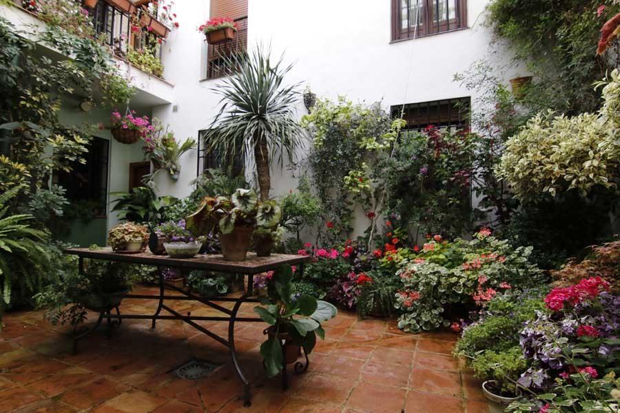 Los patios de Córdoba, San Lorenzo 2