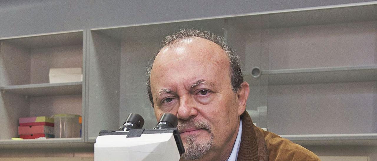 José Miguel Sempere es catedrático de la Universidad de Alicante.
