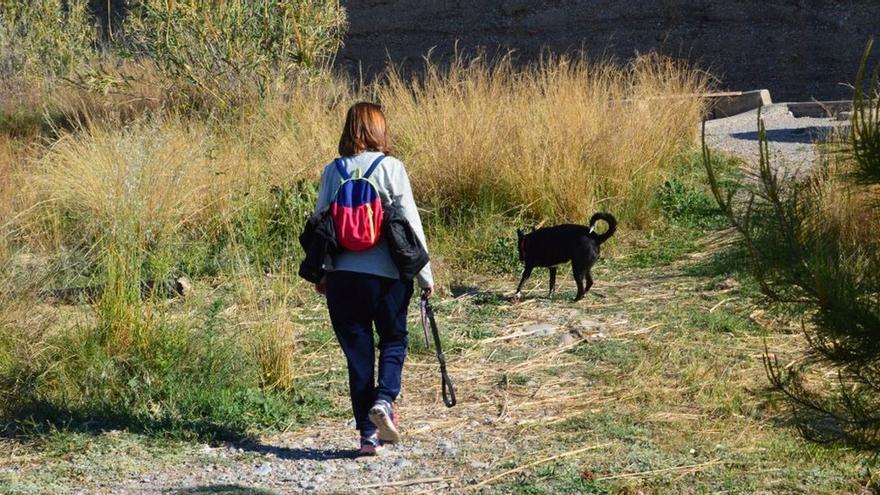 El Consorci del Millars advierte de la prohibición de llevar perros sueltos