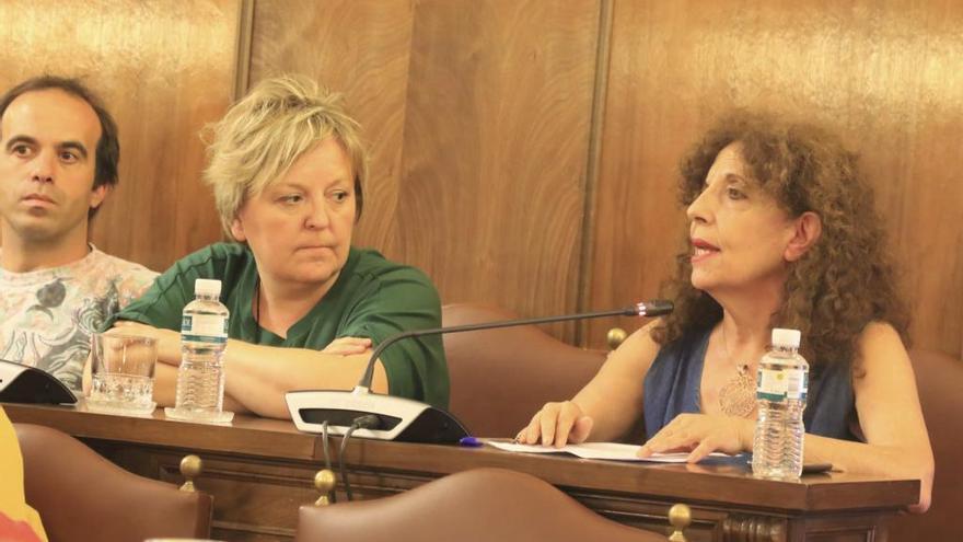 IU pregunta por qué la Diputación de Zamora se queda sin las ayudas de la Junta al comercio