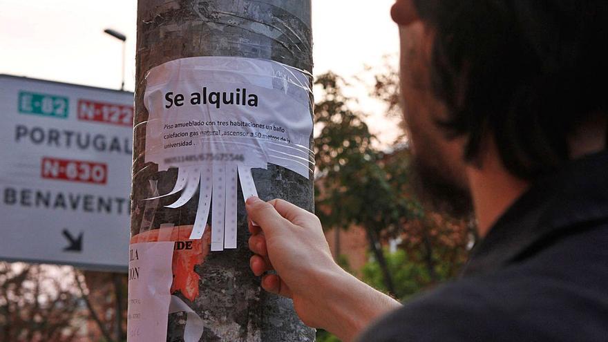 Las vacantes de empleo público en Zamora disparan el alquiler de pisos