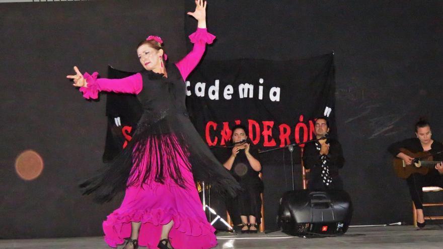 'Pandemia a golpe de baile', la subsistencia de las academias de flamenco