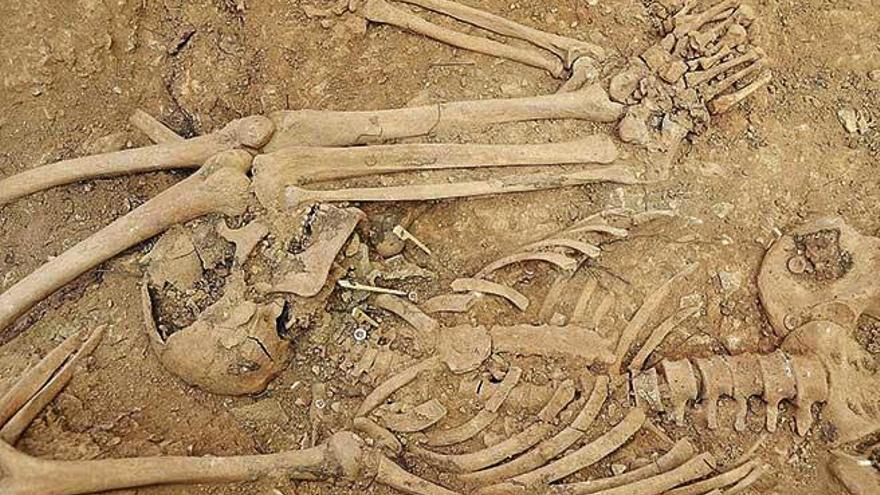 Hallados los primeros cuerpos de víctimas del franquismo en Son Coletes