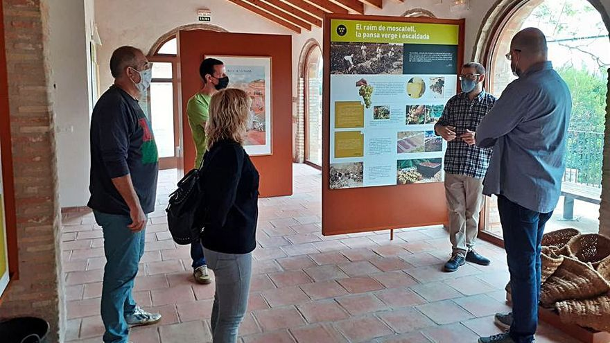 Compromís impulsa la protección de  los riuraus valencianos