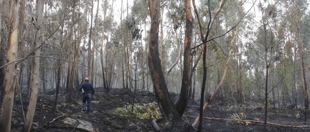 Incendio en Aldán, Cangas