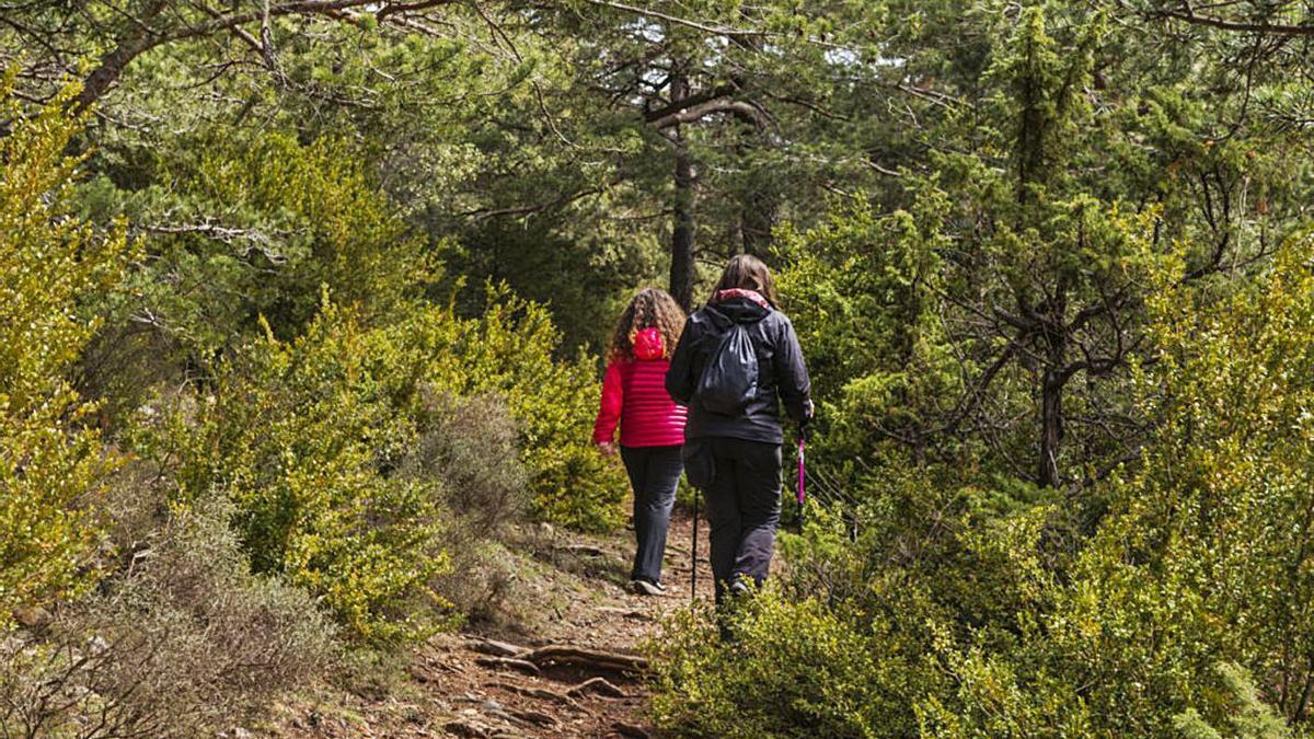 Dos excursionistes fan una ruta pels camins del Solsonès