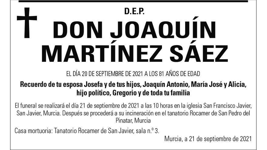 D. Joaquín Martínez Sáez