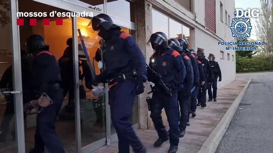 Almenys 300 detinguts en un macrooperatiu contra una xarxa que falsifica carnets de conduir